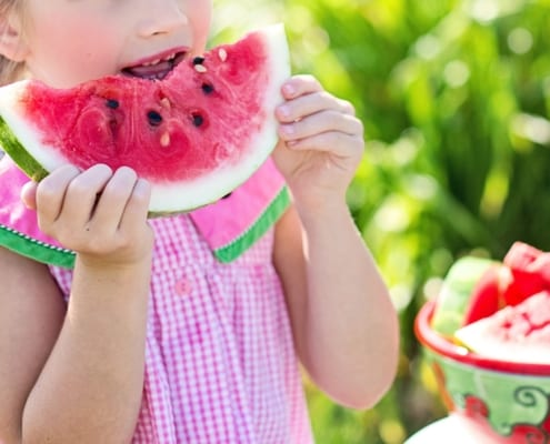 Cert of Child Nutrition blog
