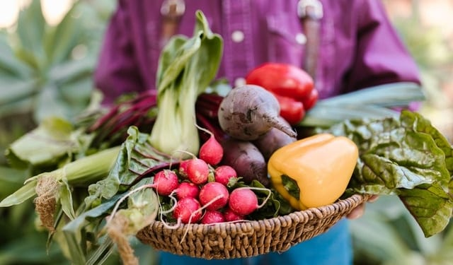 Organic farming 1