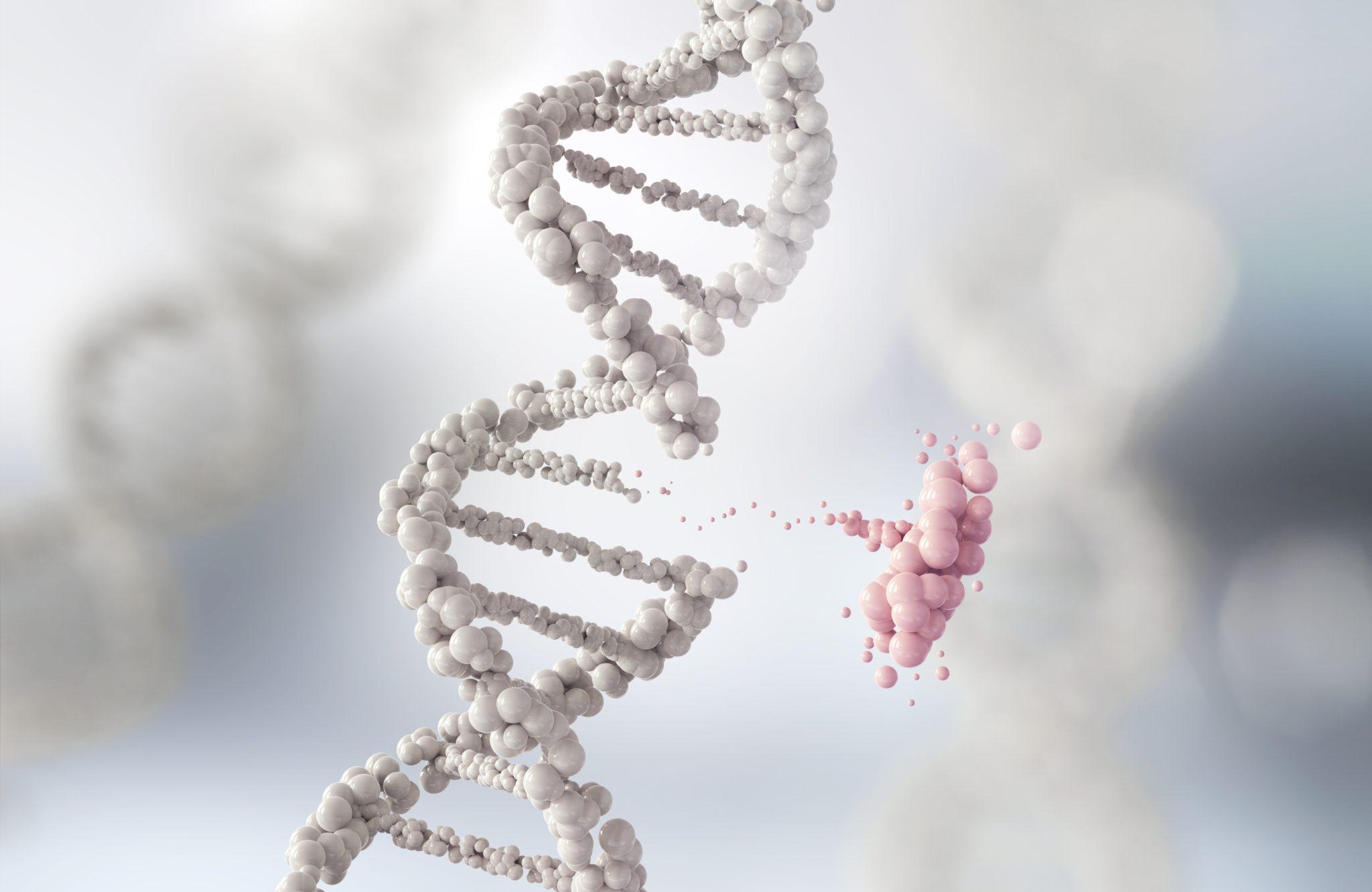Certificate of Genetic Engineering